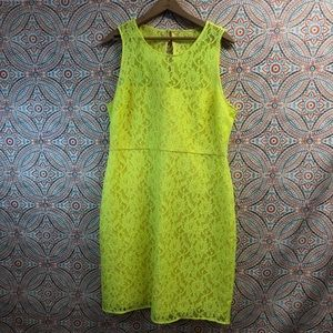 J. Crew Factory Pressed Lace Neon Yellow Dress
